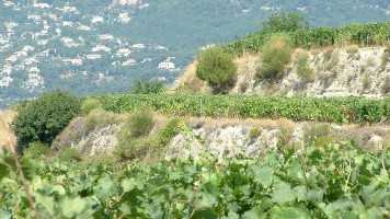 Terraces at Clot dou Baille