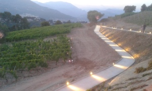 Illuminated pathways through the vineyards of Bellet